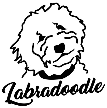 Labradoodle head silhouette with name Ilustrace