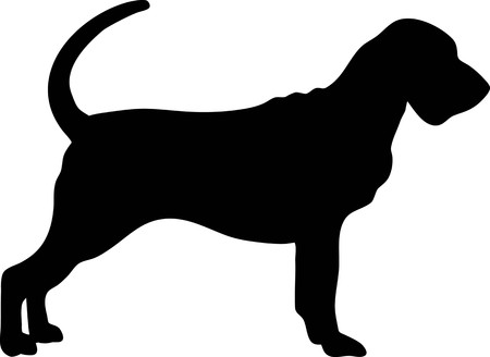 Bloodhound silhouette real in black