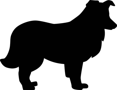 Shetland Sheepdog silhouette real in black
