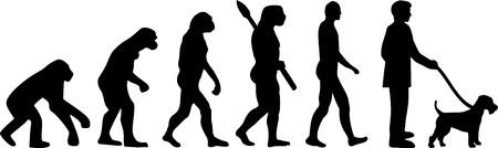 Welsh Terrier evolution development with silhouette