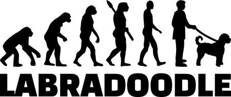 Labradoodle evolution development with word