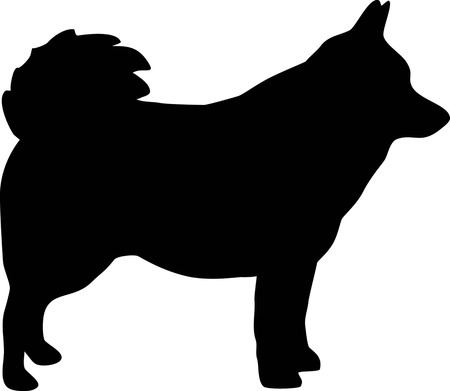 Schipperke silhouette real black Vectores
