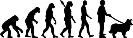 Shetland Sheepdog evolution development with silhouette