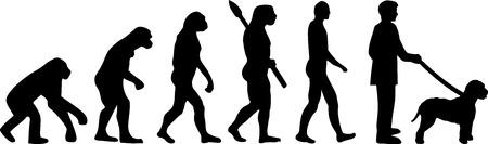 Lagotto Romagnolo evolution development with silhouette