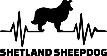Heartbeat pulse line with Shetland Sheepdog dog silhouette Illustration