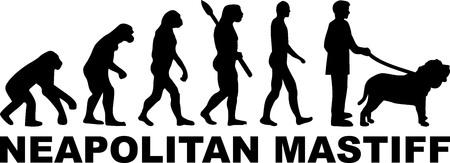 Neapolitan Mastiff evolution with word in black