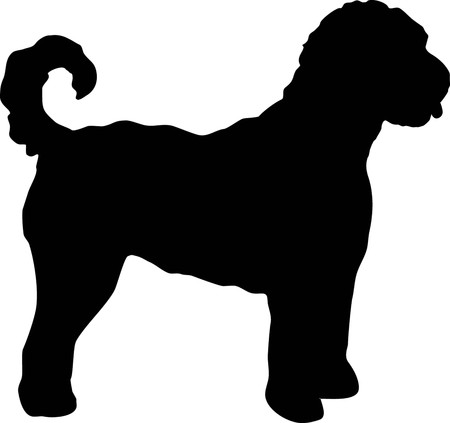 Labradoodle silhouette real in black