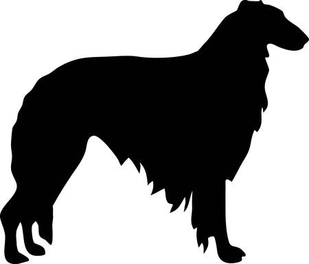 Borzoi silhouette real in black
