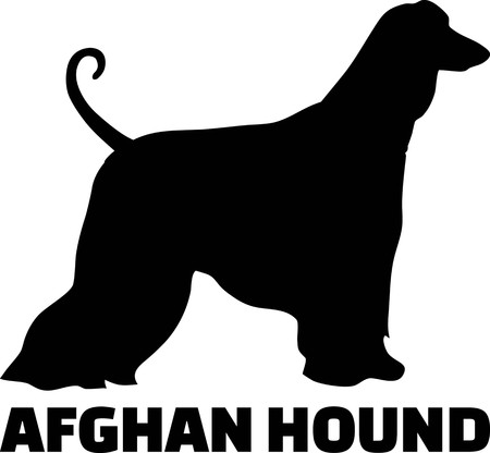 Afghan Hound silhouette real with word
