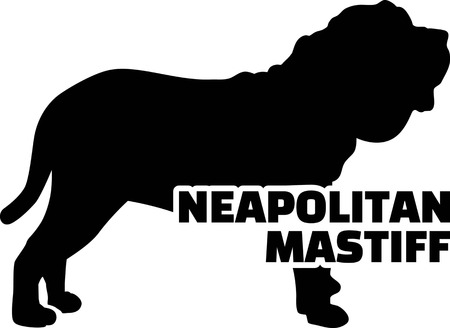 Neapolitan Mastiff silhouette real with word Ilustrace