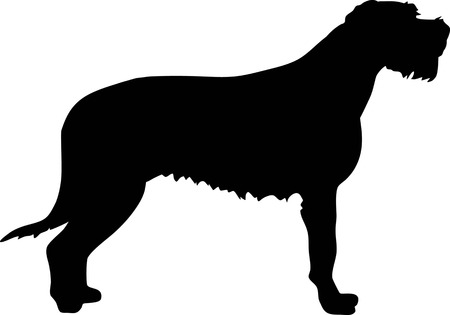 Irish Wolfhound silhouette real in black
