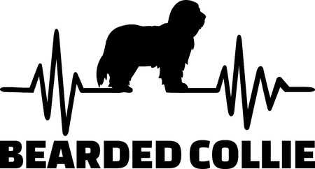 Heartbeat pulse line with Bearded Collie dog silhouette
