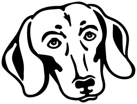 Dachshund head black and white Ilustração