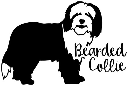 Bearded Collie dog silhouette black and white with word