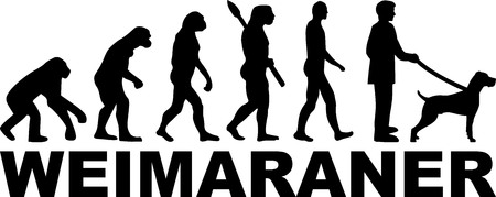 Weimaraner evolution with name and silhouette