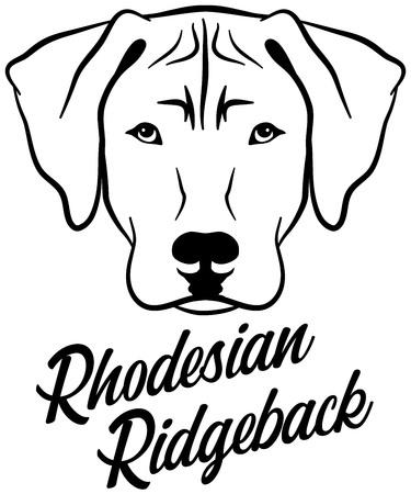 Rhodesian Ridgeback head with name Ilustração