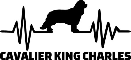 Heartbeat frequency with Cavalier King Charles dog silhouette Illustration