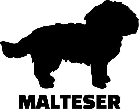 Maltese silhouette in black and white