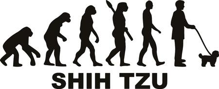 Shih Tzu evolution with name