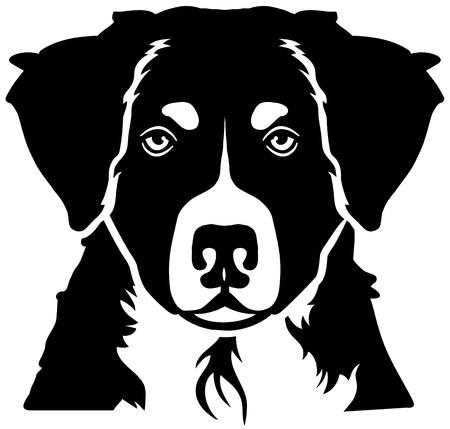 Bernese Mountain head black and white Illustration