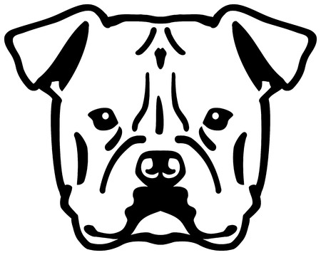 American Bulldog head black with name Фото со стока - 115192714