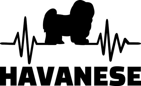 Heartbeat frequency with Havanese, dog silhouette Illustration