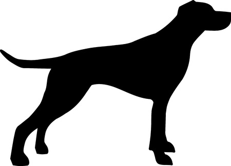 English Pointer silhouette real in black