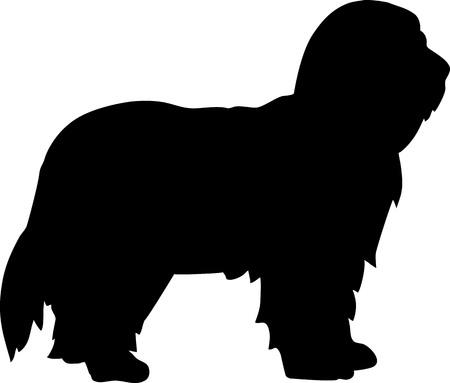 Bearded Collie dog silhouette real in black Векторная Иллюстрация