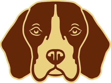 Beagle head black and white