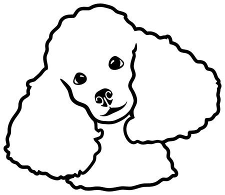Poodle head silhouette black white Stock Illustratie