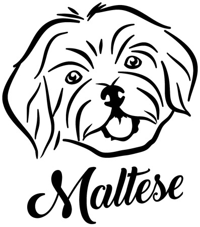 Maltese head silhouette with name Illustration