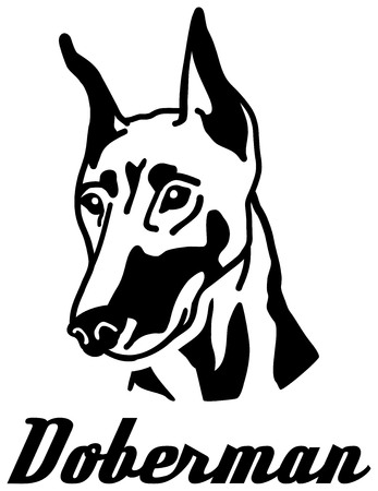 Doberman head with name black white Ilustrace