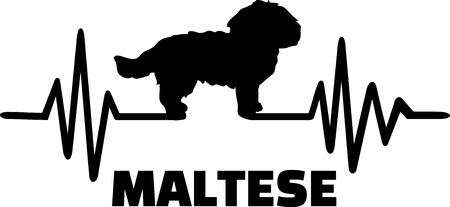 Heartbeat pulse line with Maltese dog silhouette