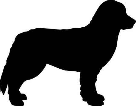 Bernese Mountain silhouette in black