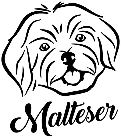 Maltese head silhouette in german Иллюстрация
