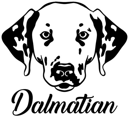 Dalmatian head with name black white Ilustrace