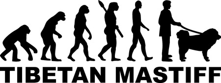 Tibetan Mastiff dog evolution with word in black