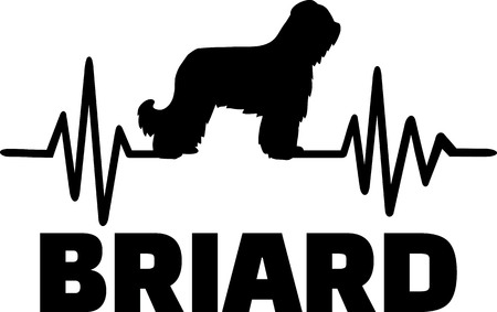 Heartbeat frequency with Briard dog name and silhouette