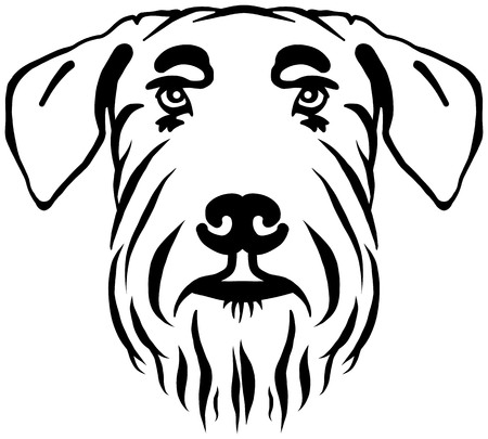 Giant Schnauzer head in black and white 向量圖像