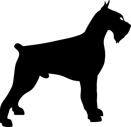 Giant Schnauzer silhouette in black