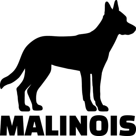 Malinois silhouette in black with name 向量圖像