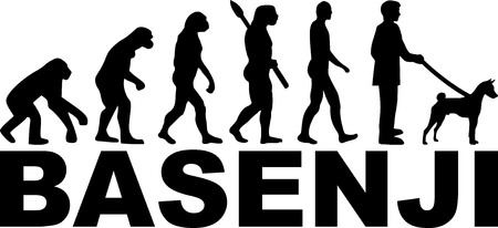 Basenji evolution with silhouette and name  イラスト・ベクター素材