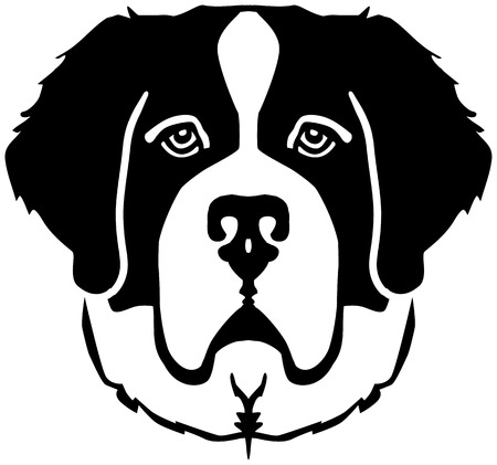 Saint Bernard head black and white Ilustrace