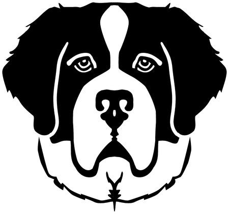 Saint Bernard head black and white Illustration
