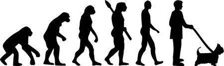 Australian Silky Terrier dog evolution with silhouette Vector Illustration