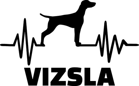 Heartbeat frequency with Vizsla dog name and silhouette