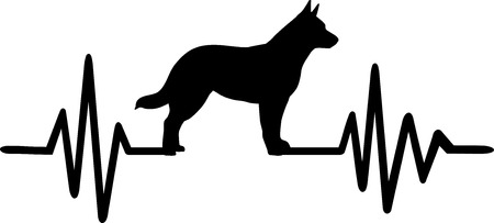 Heartbeat frequency with Australian Cattle Dog dog silhouette