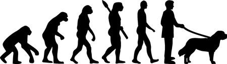 Saint Bernard evolution with Saint Bernard name Vector Illustratie