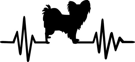 Papillon heartbeat frequence with silhouette