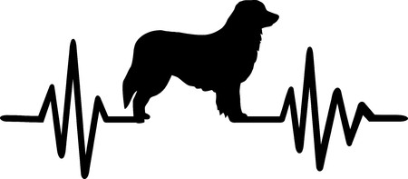 Heartbeat frequency with Hovawart dog silhouette Ilustrace